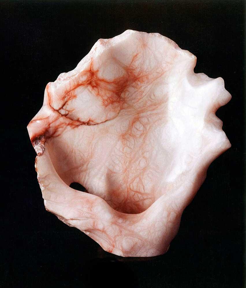 Mark Dobkin Studio Ancient Shell