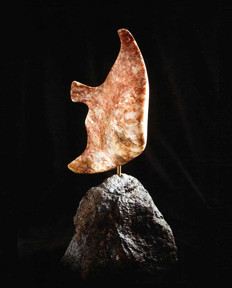 Mark Dobkin Studio Fish from a Coral Sea
